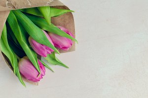 Bouquet of tulips on light background