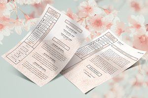Resume & Cover Letter | CV | 2 Page