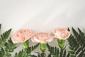 Easter Carnations Mockup Stock