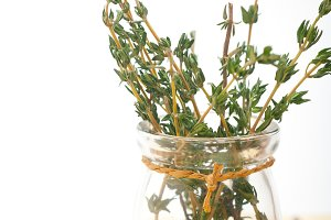 fresh thyme branches