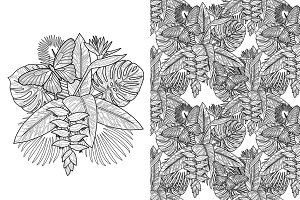 Tropic Coloring Page Set