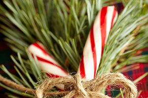 Peppermint Christmas Candy Canes