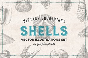 Shells - Vintage Engravings Set