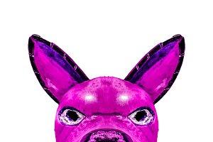 Dark Tribal Dog Mask Isolated