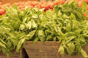 Basil at the market