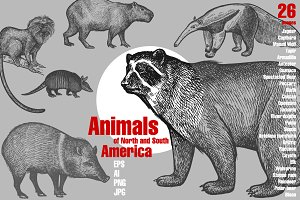 Animals of North and South America.