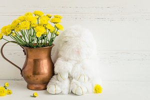 Easter composition with white rabbit and flowers
