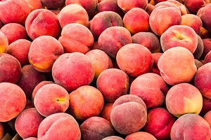 Fresh picked peaches