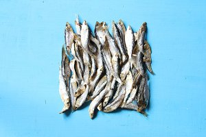 Sun dried fish. Art food composition. Soft focus.