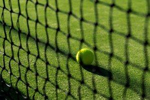 Focused Tennis Ball behind the Nett
