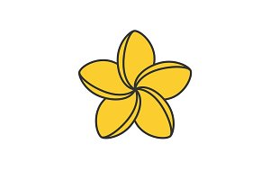 Spa salon plumeria flower color icon