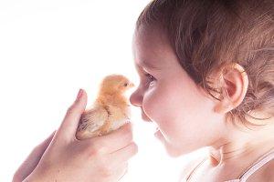 Happy child and little chicken
