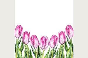 Watercolor pink tulip border frame
