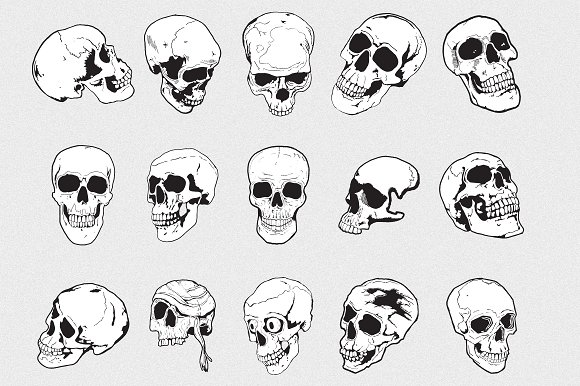 Skulls Vector Pack ~ Objects on Creative Market