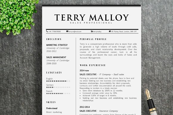 Resume Template Terry
