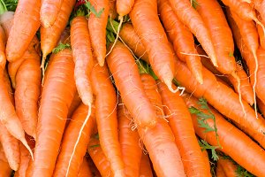 Bunches of fresh carrots at the market