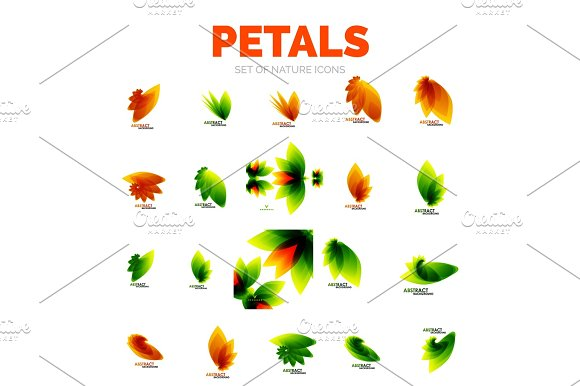 Vector Flower Petals And Leaves