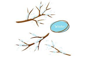 Winter set with branches of tree and snow. Seasonal illustration