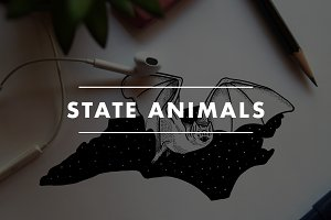State Animal Illustrations