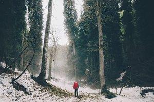 Traveler walking alone at foggy