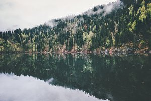 Lake and coniferous Forest