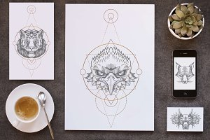 Wild animals and geometric symbols