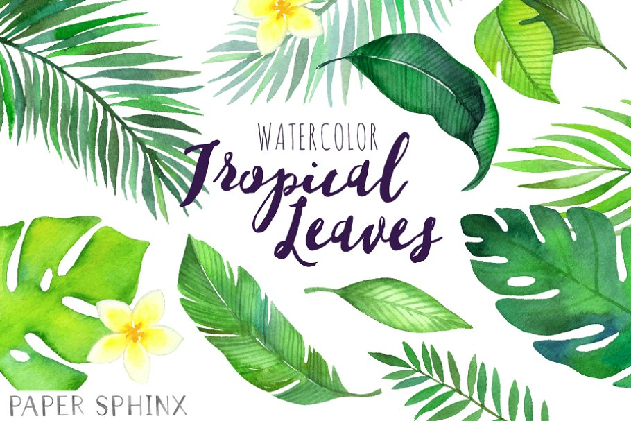 Watercolor Tropical Leaves Clipart | Custom-Designed Illustrations ...