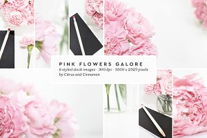 75%OFF Pink Flowers Styled Stock