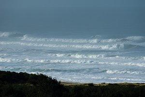 Foggy scenic of the Pacific coast