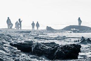 People on desolate windy beach
