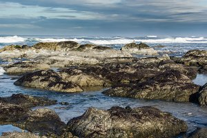 Pacific coast tide pool with clouds