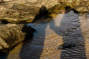 Shadow of a couple holding hands on the beach