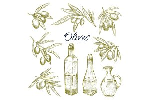 Olives, olive oil bottles pitchers vector sketch