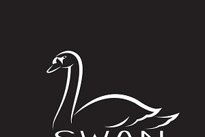 Vector of a swan design.
