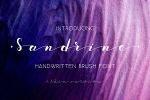 Sandrine Brush Font. Script.