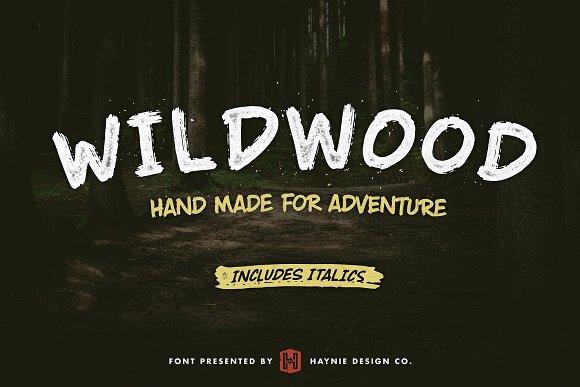 Wildwood Dry Brush Font