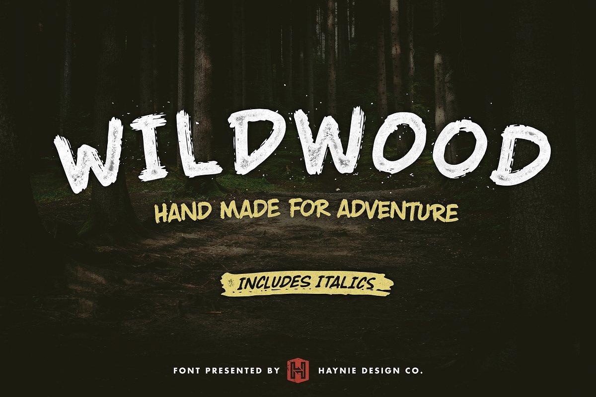 Wildwood Dry Brush Lettering Font Display Fonts Creative Market
