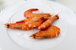 Shrimps plate