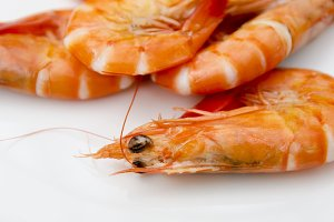 Shrimps close up