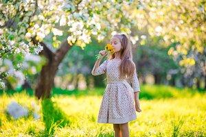 Little beautiful girl enjoying smell of flowes in spring apple garden