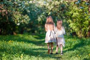 Back view of adorable girls walking in blooming apple garden on sunny spring day