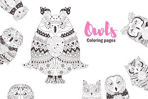 Owls. Coloring pages