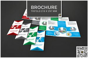Corporate Hive Trifold