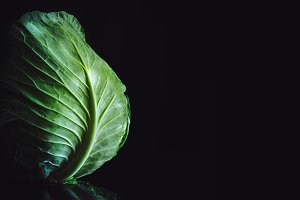 Cabbage on black background