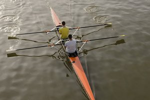 Rowers in the river