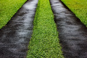 Asphalt road with green grass