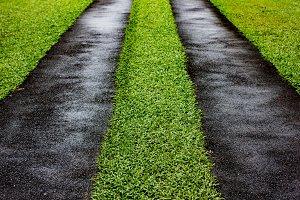 Asphalt road with green grass