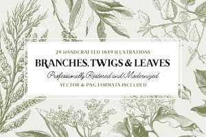 29 Branches, Twigs & Leaves (+Bonus)