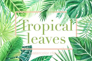 Tropical leaves. Watercolor clip art