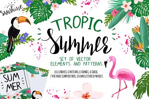 TROPIC SUMMER  vector graphics set